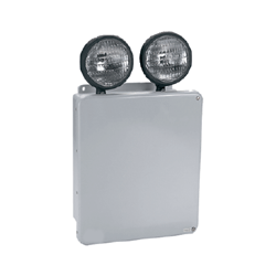 High Impact Thermoplastic Emergency Light Series : ELDT